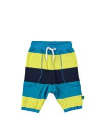 Green Cotton Shorts in Blau/ Gelb